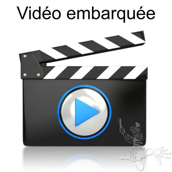 Option vidéo embarquée
